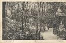 Bad Nauheim (Hessen)-Historische Ansichtskarten