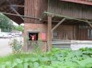 Landstraße, Gebenstorf, Aargau - rote Kuh im Stall: Blüemli grüßt Christa