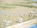 Entlang der Promenade der Marismas de Isla Cristina, Naturschutzgebiet in der Huelva, 2008