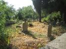 Alanya-Ehmedek, der Burgfriedhof: ein islamischer Friedhof, 26.10.2010